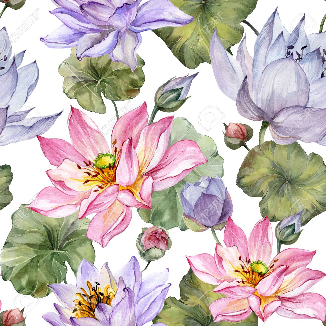 Design Of Textile Or Wallpaper Beautiful Floral Seamless Pattern Large Pink And Purple Lotus Flowers With Leaves On White Background