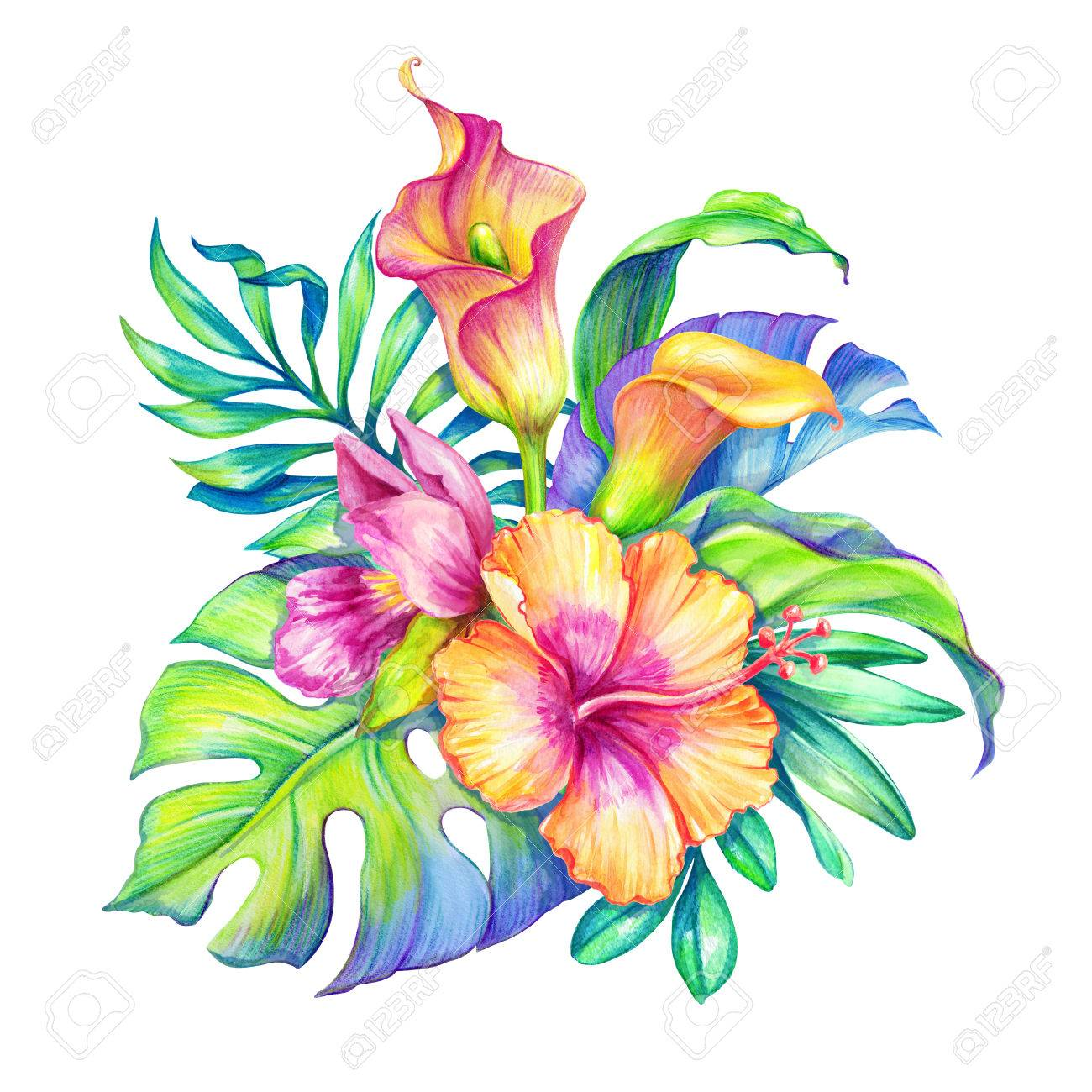 Watercolor floral illustration exotic nature tropical flowers illustration watercolor floral illustration exotic nature tropical flowers bouquet orchid hibiscus cala lily green palm leaves isolated on white izmirmasajfo