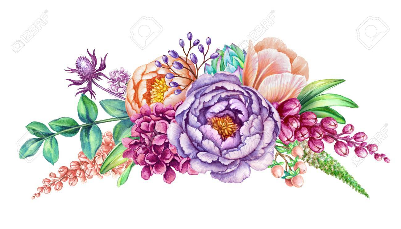 Watercolor Illustration Floral Background Wild Flowers Beautiful