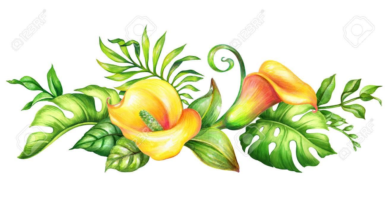 Aquarell Botanische Illustration Wilde Gelbe Tropische Blumen