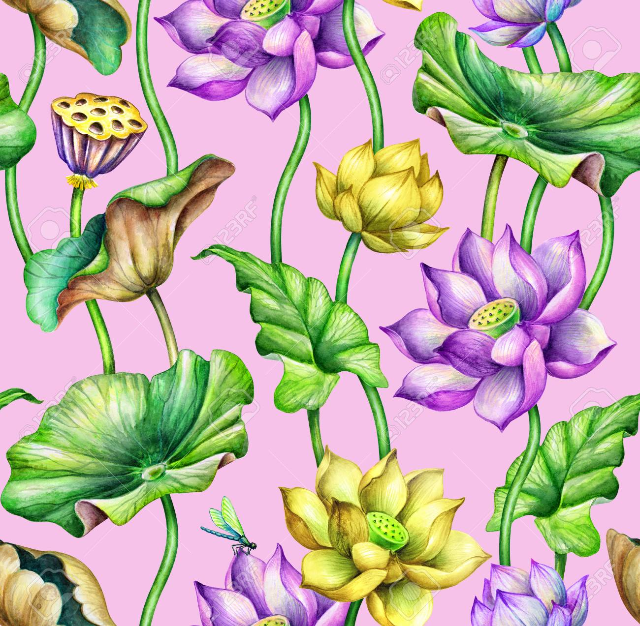 Seamless Botanical Pattern Watercolor Floral Background Pink