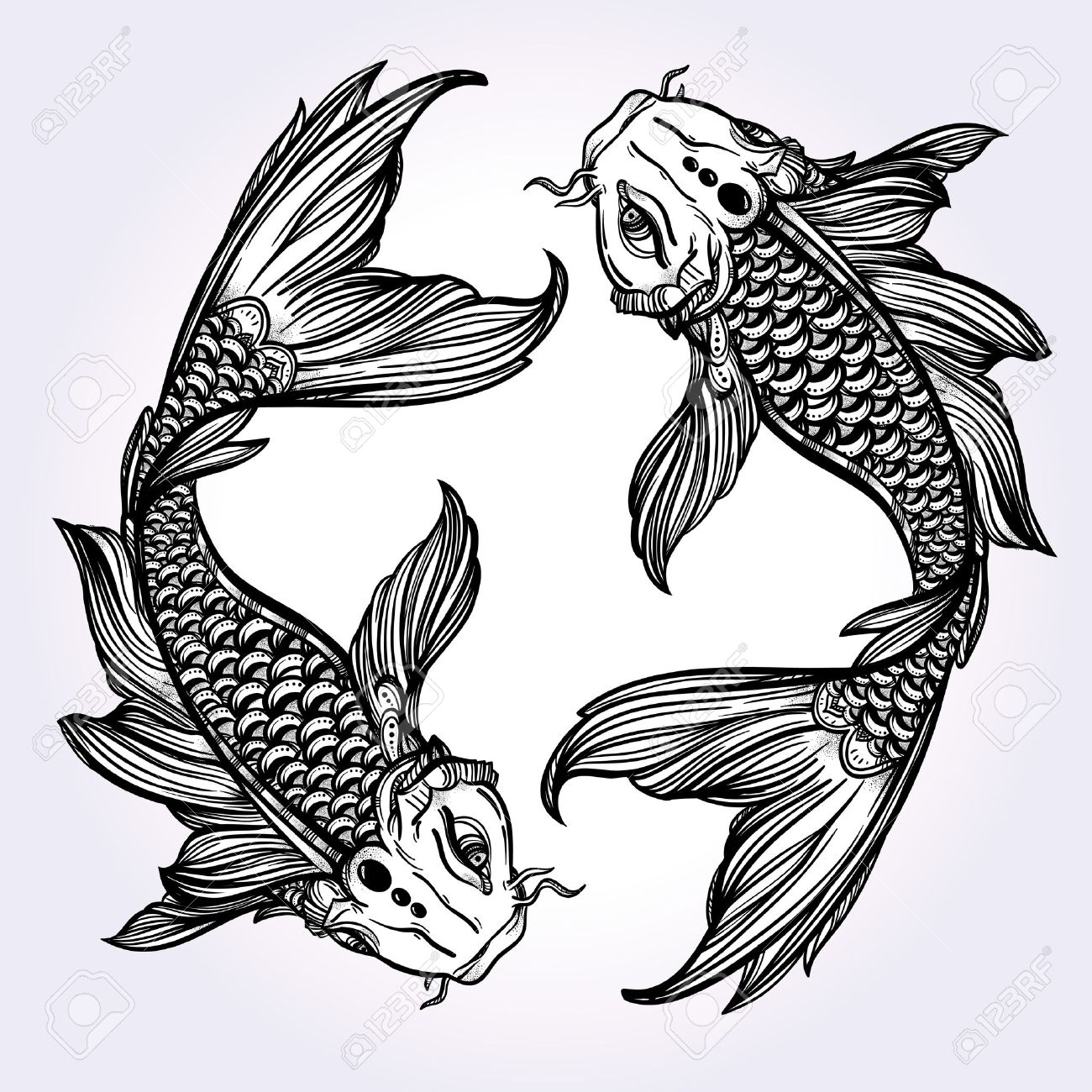 hand drawn romantic beautiful line art of fish koi carp symbol