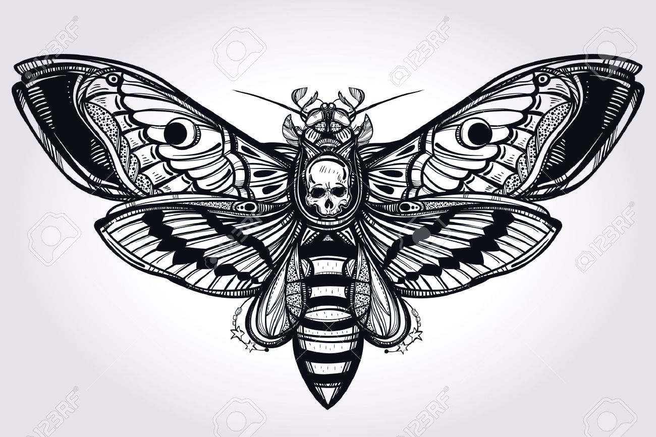 Deaths head hawk moth hand drawn silhouette. Design tattoo art. Elegant Isolated vector illustration. Trendy Vintage element. Dark romance, philosophy, spirituality, occultism, alchemy, death, magic. Stock Vector - 47867949