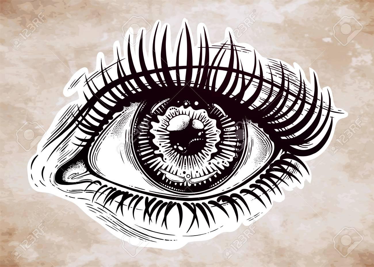 Wunderschönes, Realistisches Auge Mit Hochdetaillierter Pupille ...