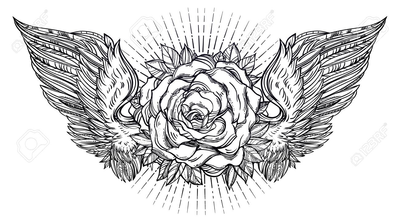 Beautiful Rose Flower With Angel Or Bird Wings Botany Tattoo
