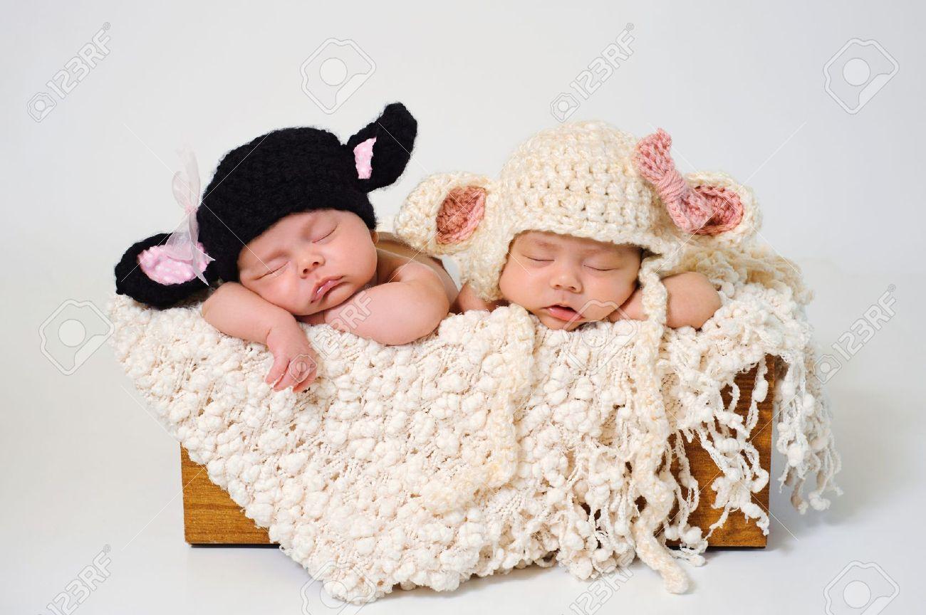 Sleeping fraternal twin newborn baby girls wearing crocheted black lamb and white lamb hats stock photo