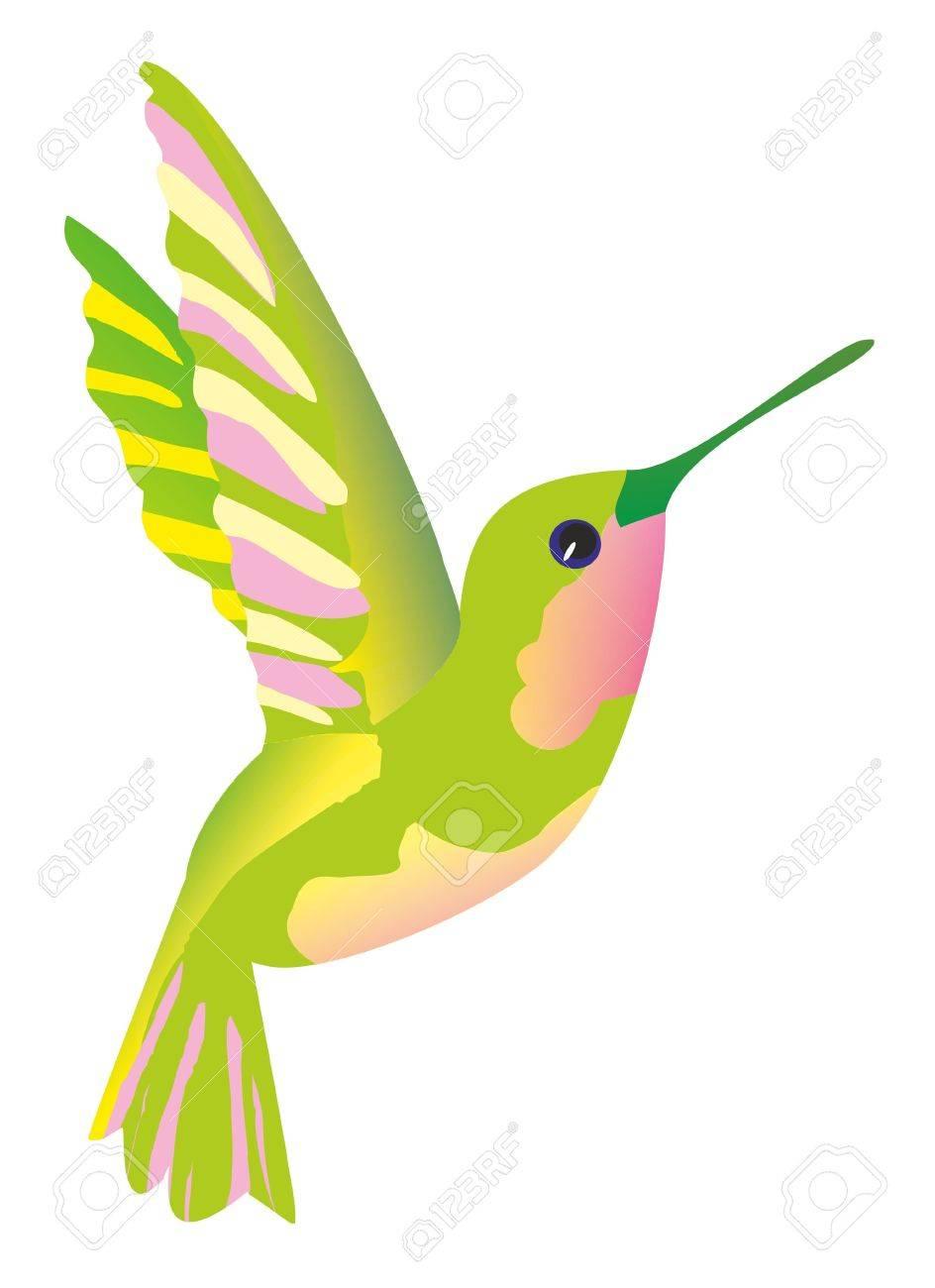 illustration green hummingbird royalty free cliparts vectors