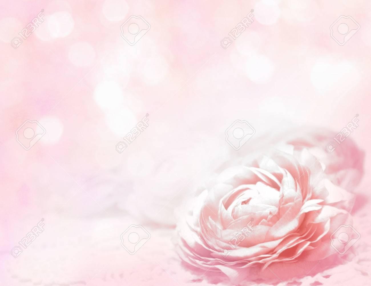 Roses sfondo Archivio Fotografico - 34429730