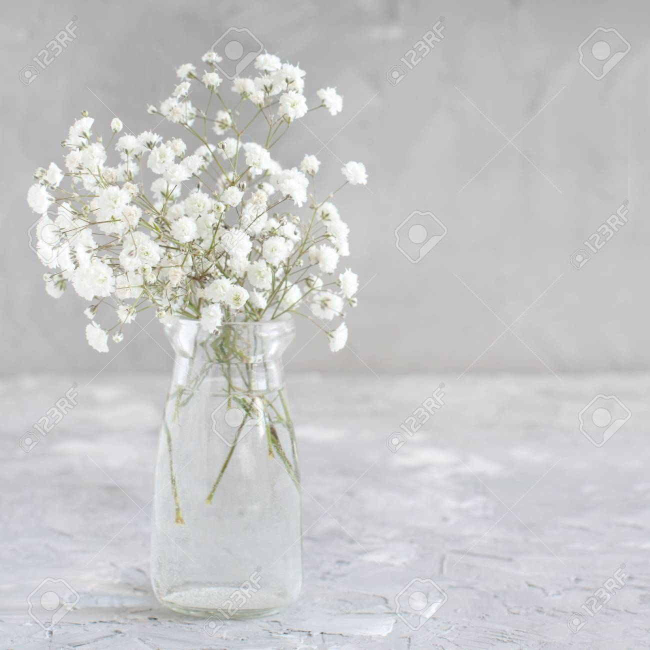 Bouquet Of Small White Flowers In A Jar On A Grey Background Stock Photo Picture And Royalty Free Image Image 115002429