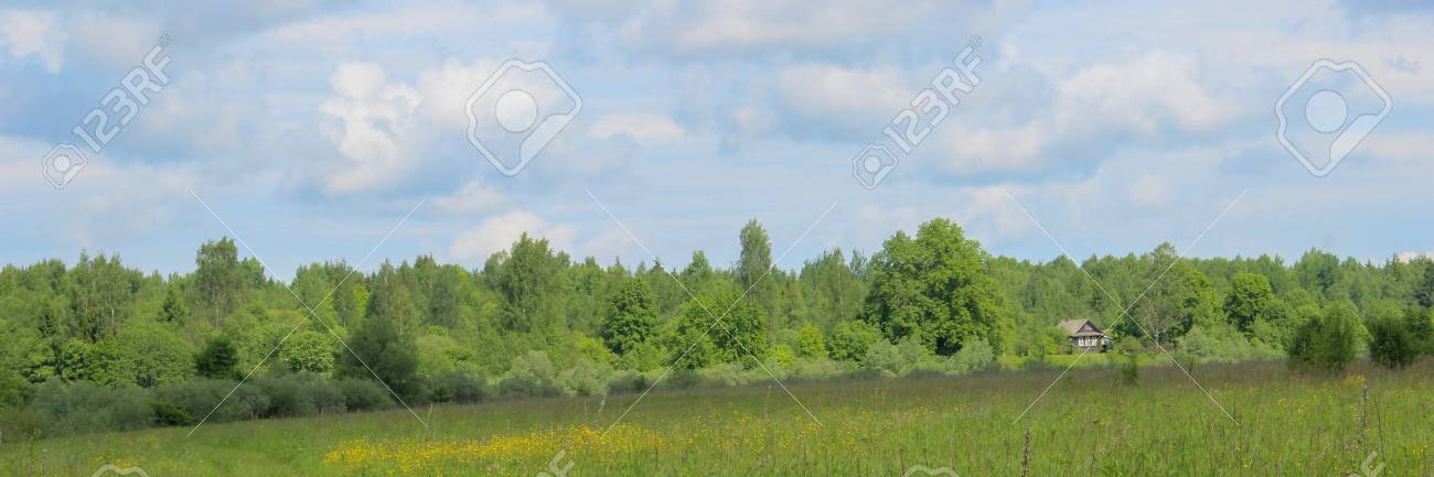 rural landscape, road through green fields, perspective, distant farmhouse, blue sky. - 126957831