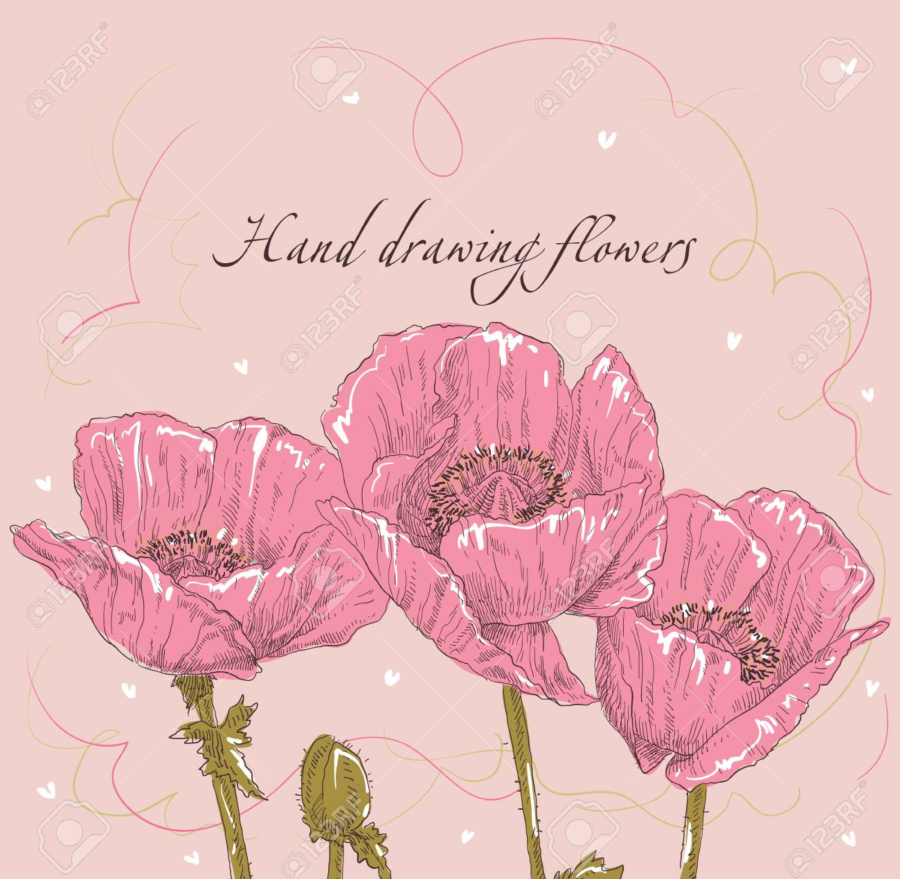 Beauty Hand Drawing Card Flower Frames. Vector Illustration. Royalty ...