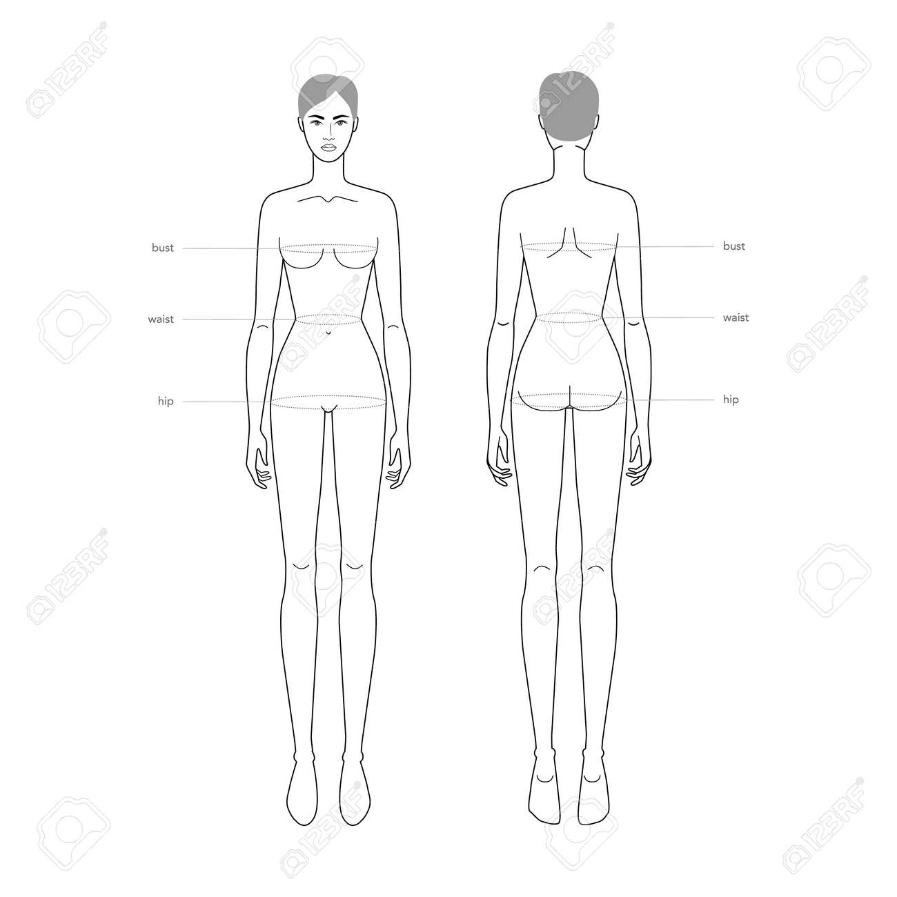 Women standard body parts terminology measurements Illustration for clothes and accessories production fashion lady size chart. 9 head girl for site and online shop. Human body infographic template - 158936964
