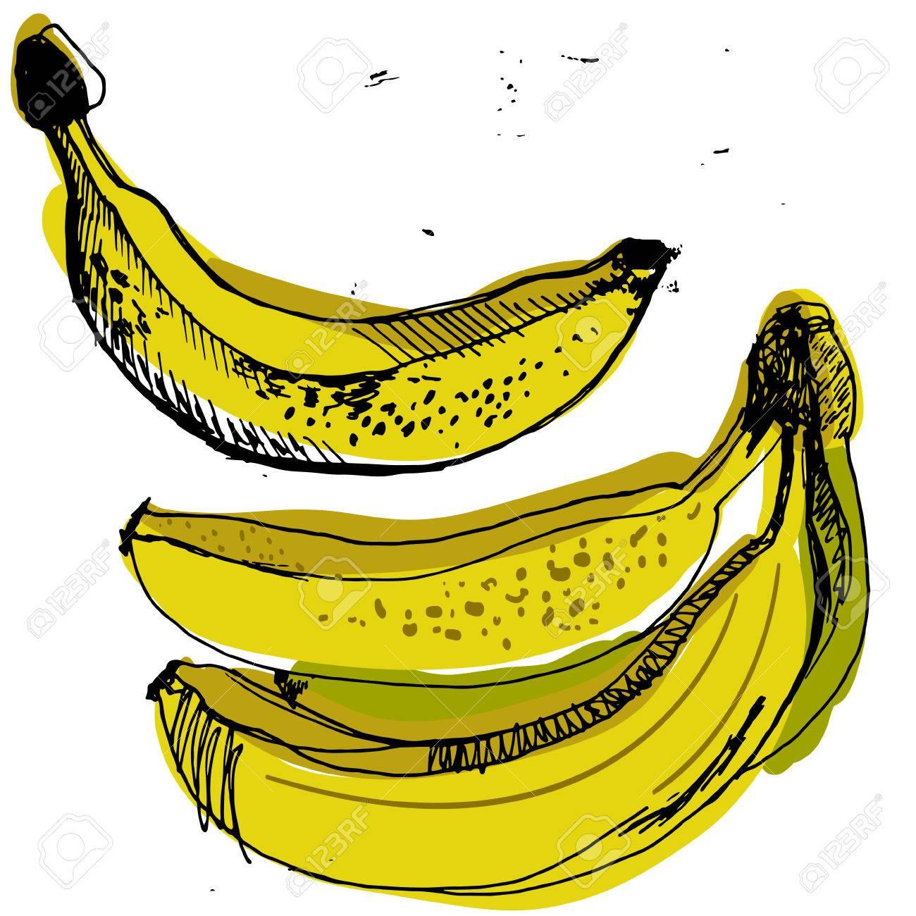 Sweet Yellow Bananas Sketched Banana Hand Drawn Set Of Ripe