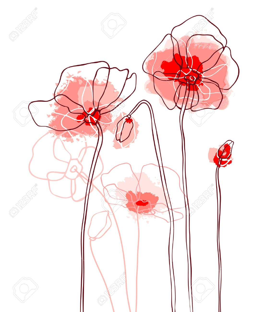 Red poppies on a white background Stock Vector - 12486685