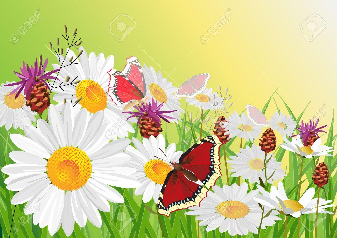 Summer, flowers, butterfly. Stock Vector - 6497070