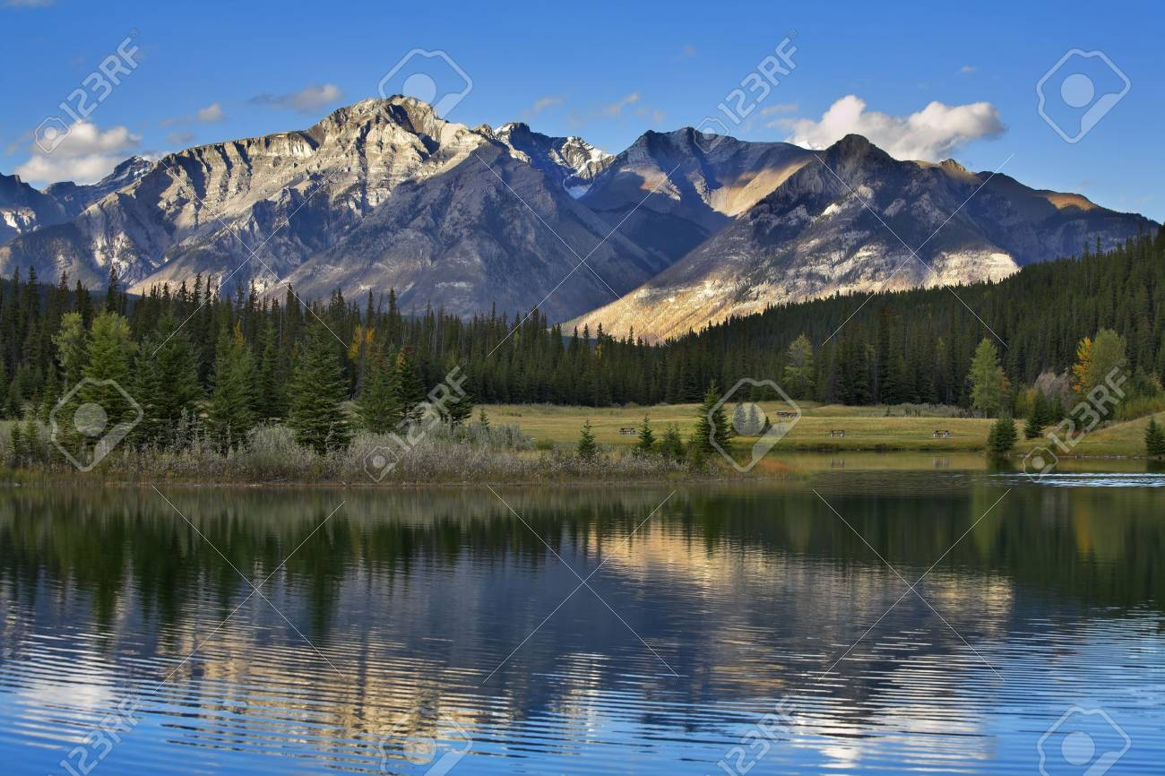 Lake in mountains of Canada and a fur-tree on coast Stock Photo - 2374569