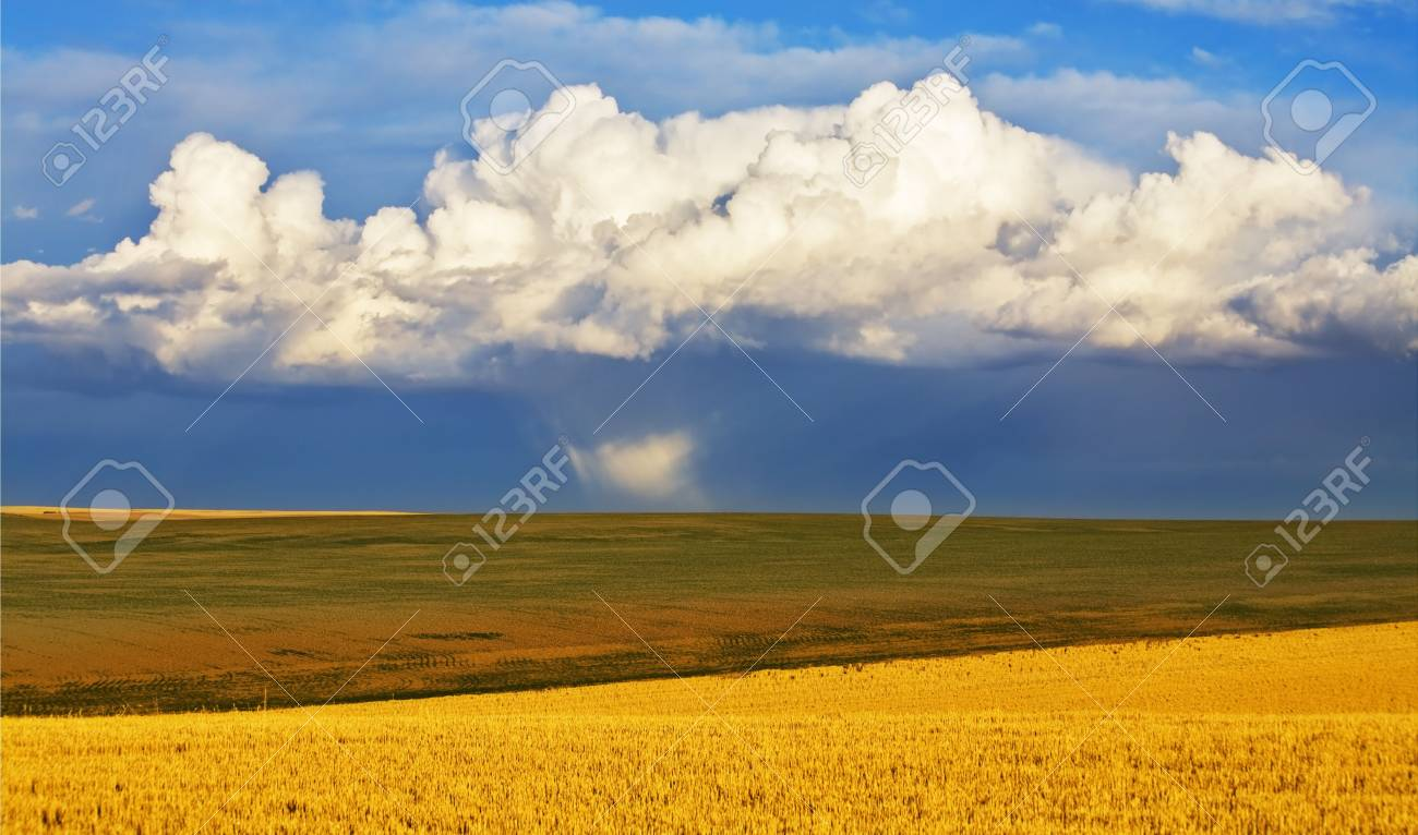 Huge field in the autumn after a rain Stock Photo - 3891320