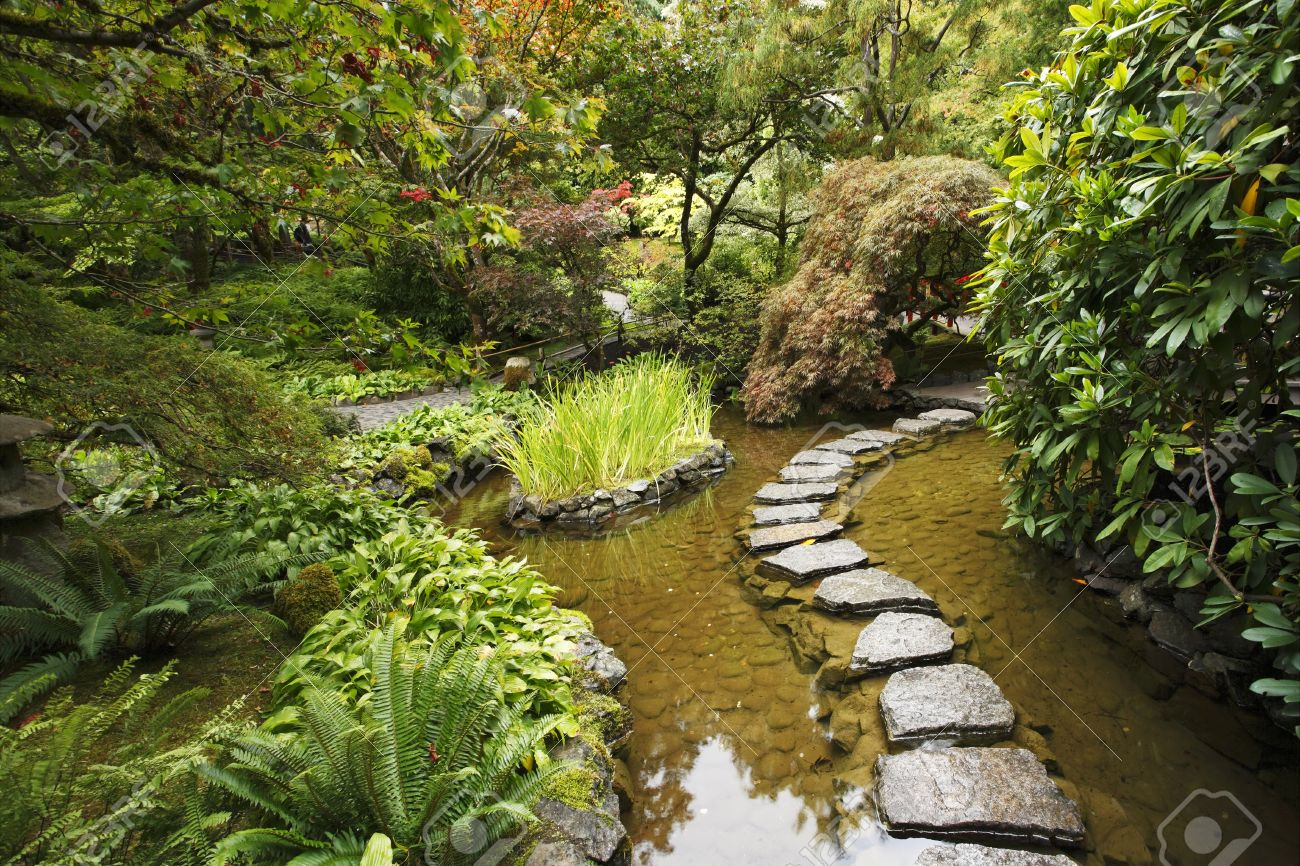 Traditional japanese gardens - Stock Photo Traditional Japanese Garden A Stream And A Decorative Path From Stones