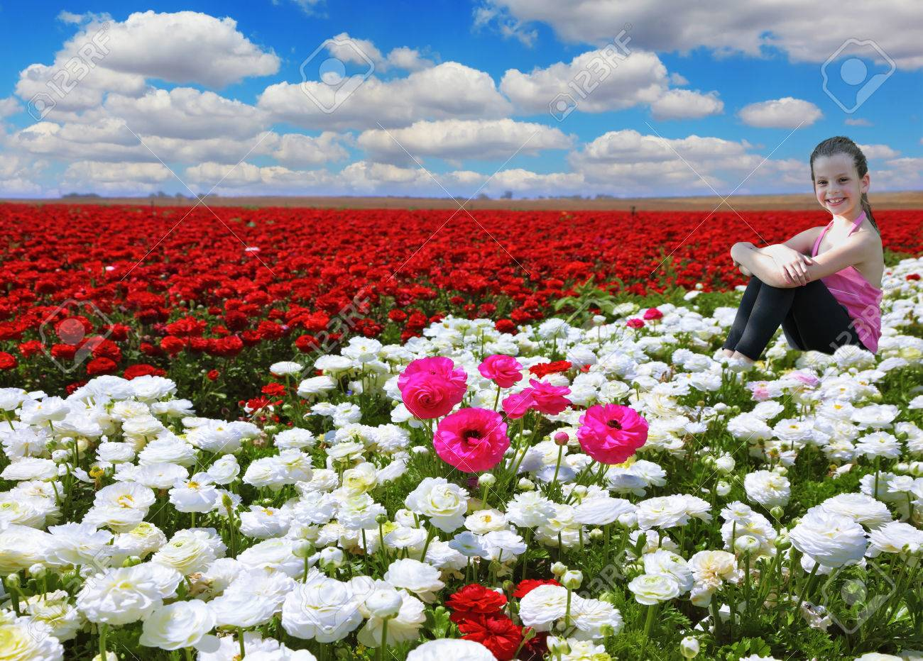 Very beautiful bright colorful flower fields commercial cultivation photo very beautiful bright colorful flower fields commercial cultivation of flowers for sale abroad among the flowers charming smiling little girl izmirmasajfo Image collections