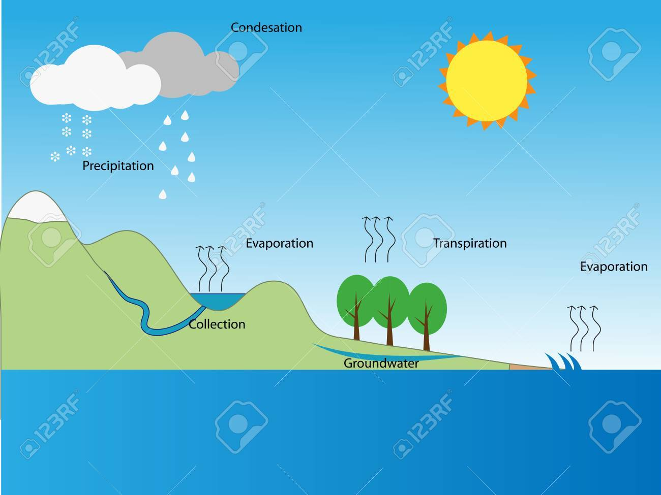 Water cycle royalty free cliparts vectors and stock illustration water cycle stock vector 48055000 ccuart Image collections