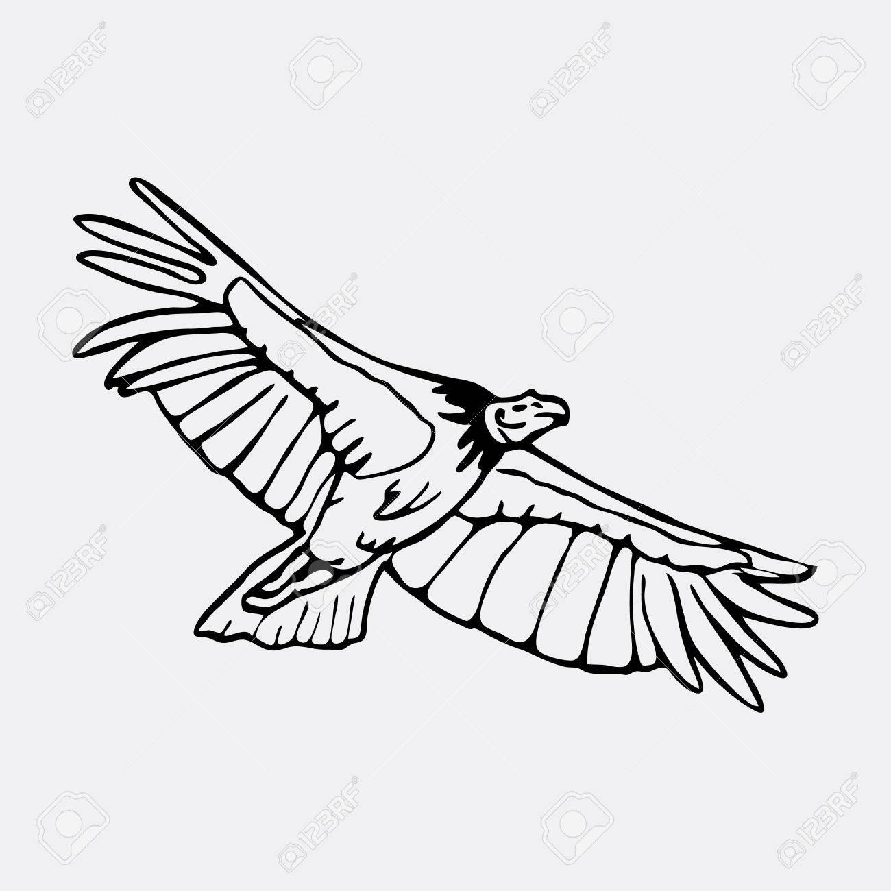 Gráficos Lápiz El Buitre El águila El águila Pescadora Halcón Carroñero Condor Dibujado A Mano Grabado Estilo De La Plantilla Logotipo