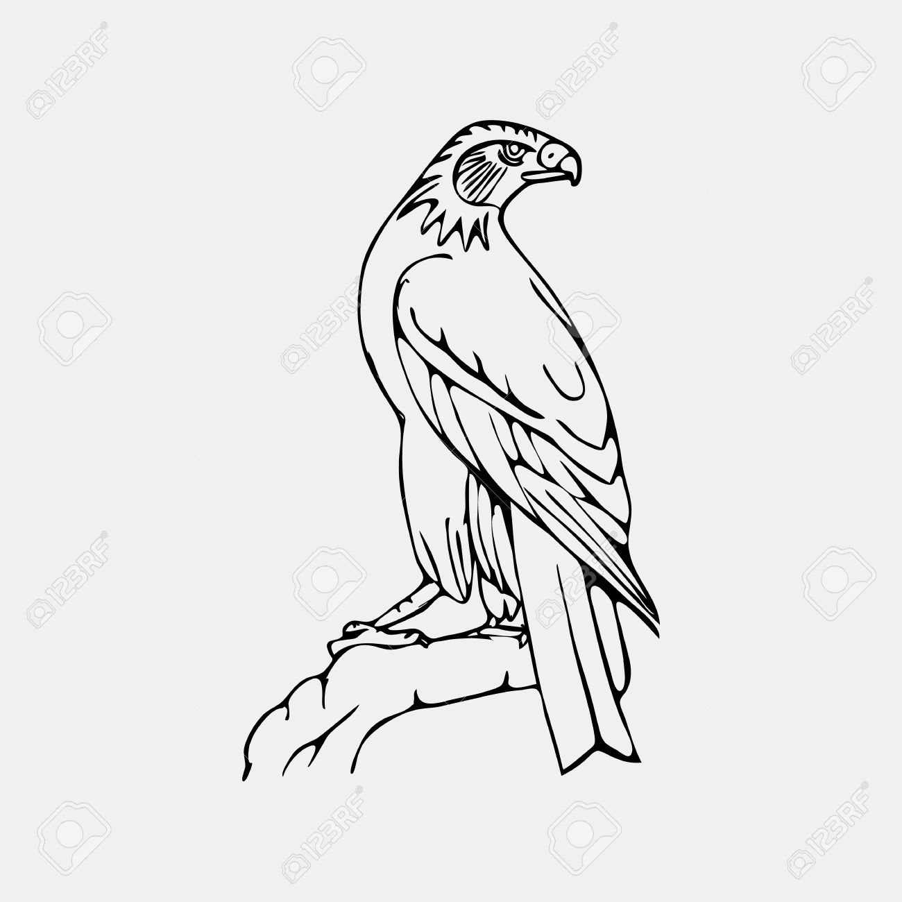 drawn eagle easy pencil and in color drawn eagle easy