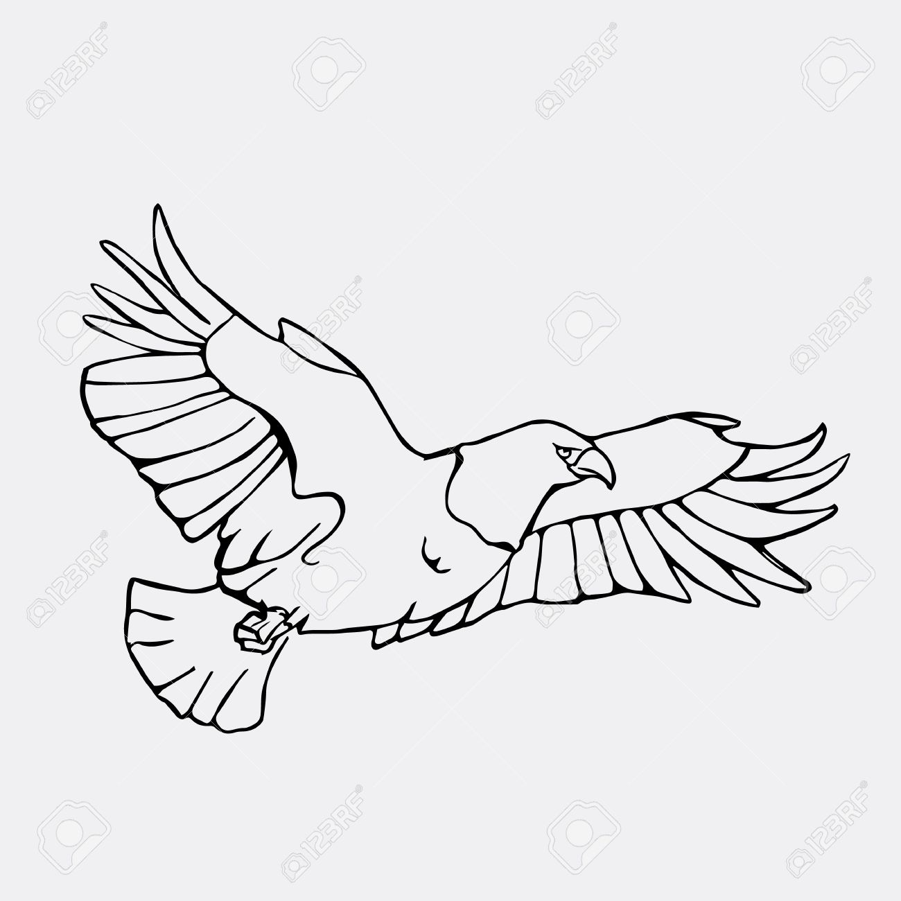 Gráficos Lápiz El Buitre El águila El águila Pescadora Halcón Carroñero Condor Karkar Cometa Dibujado A Mano Grabado Estilo De La