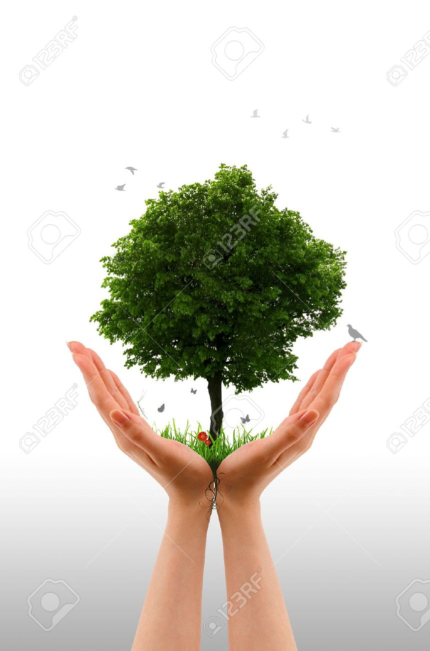 High resolution graphic of hands holding a tree. Stock Photo - 9616682