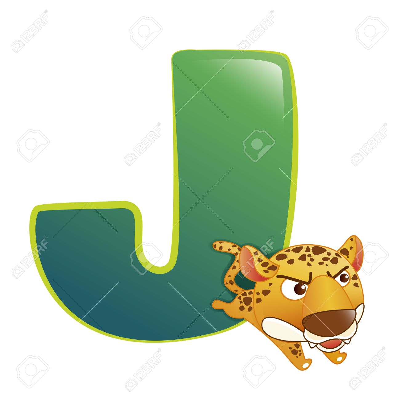 illustration of isolated animal alphabet J with leopard on white Stock Vector - 14322891
