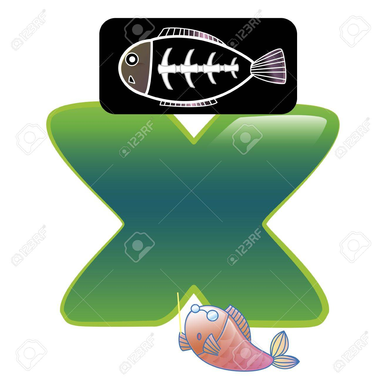 illustration of isolated animal alphabet X with X-ray fish on white Stock Vector - 14322900