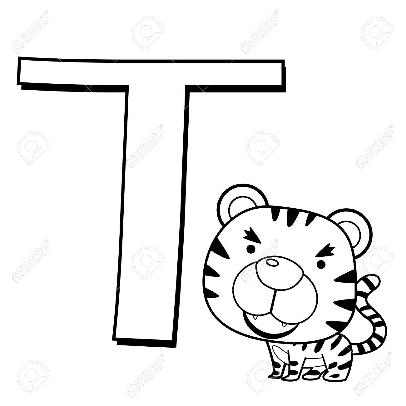 coloring alphabet for kids t with tiger royalty free cliparts