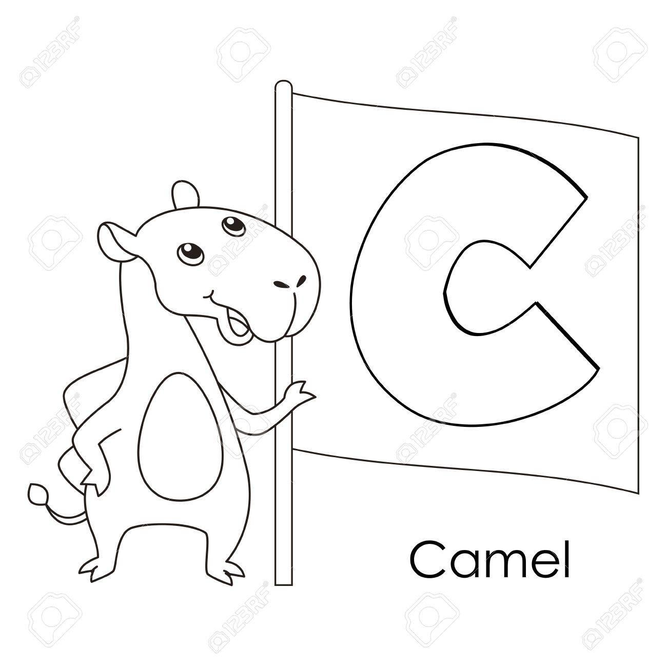 Malvorlagen Alphabet Für Kinder, C Mit Kamel. Lizenzfrei Nutzbare ...