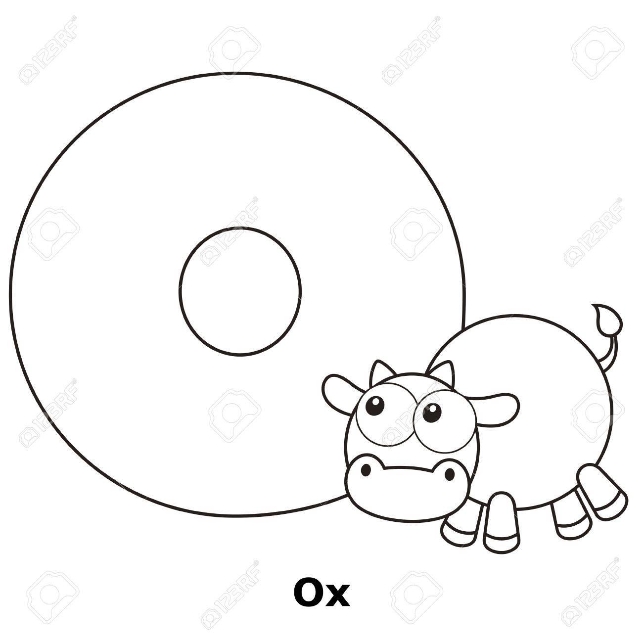 Malvorlagen Alphabet Für Kinder, O Mit Ochsen. Lizenzfrei Nutzbare ...