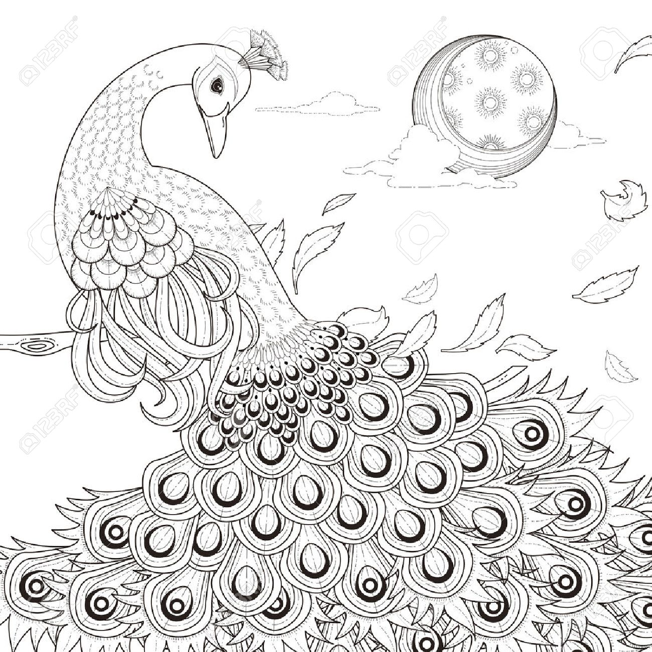 Graceful Peacock Coloring Page In Exquisite Style Stock Vector