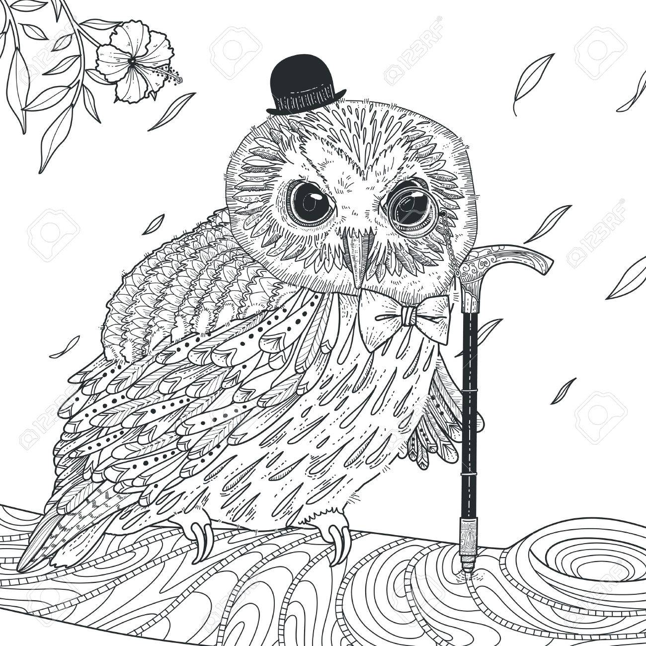Adorable Owl Coloring Page In Exquisite Style Royalty Free Cliparts ...