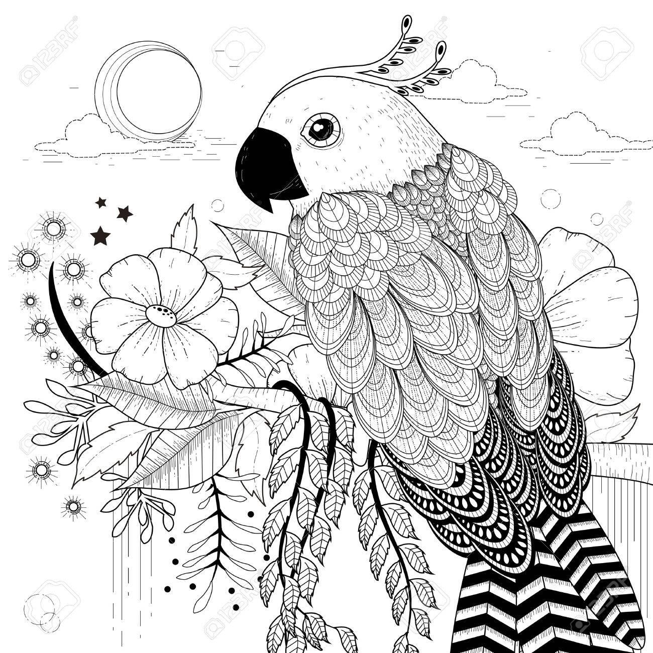 Belle Page A Colorier De Perroquet Dans Un Style Exquis Clip Art Libres De Droits Vecteurs Et Illustration Image 45962510