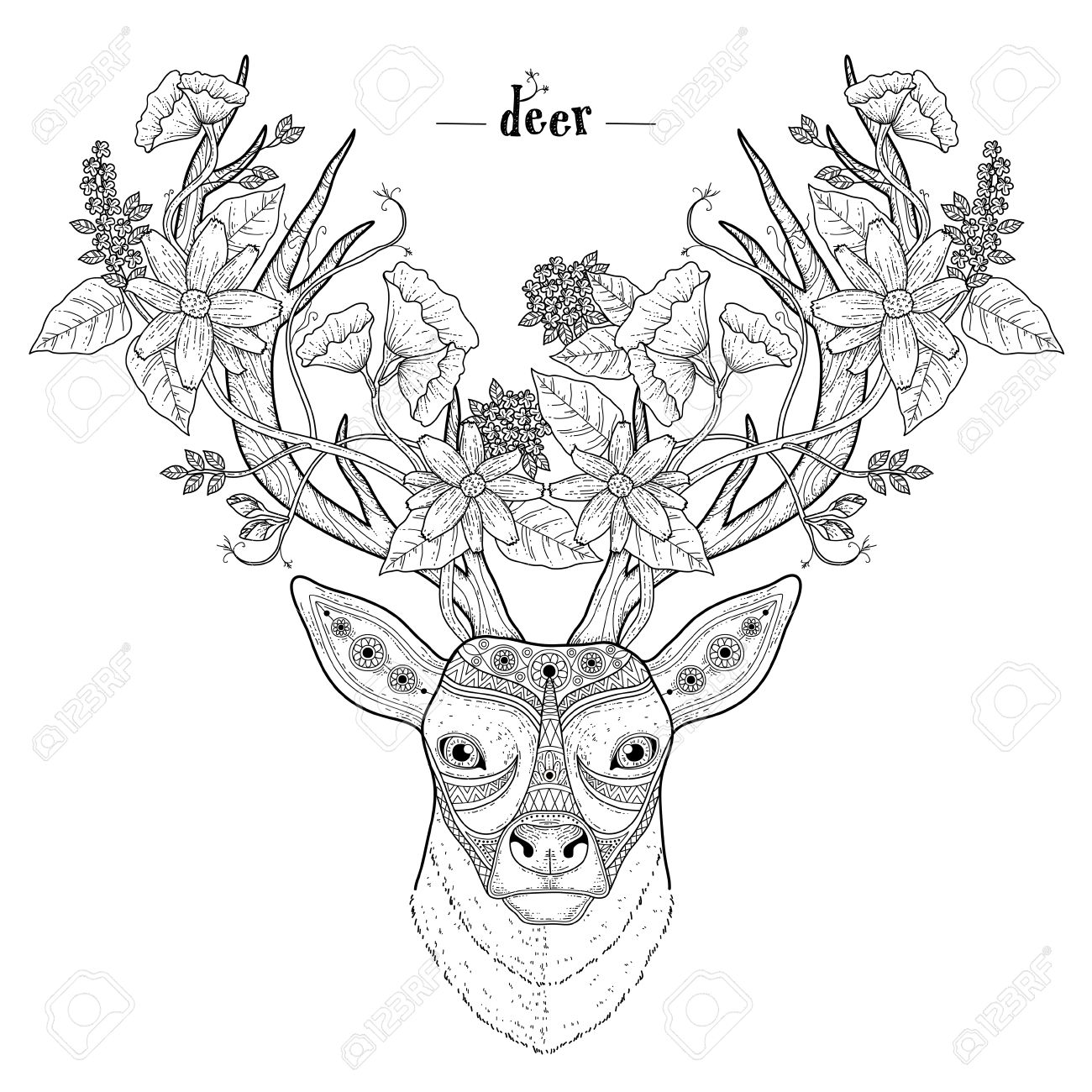 Elegant Deer Head Coloring Page In Exquisite Style Stock Vector