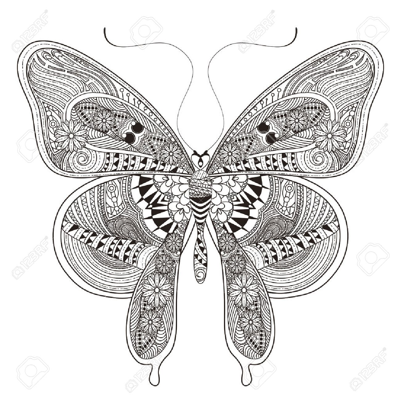 Famoso Libre Mariposa Para Colorear Patrón - Dibujos Para Colorear ...