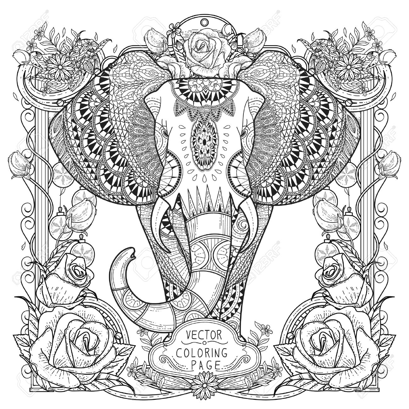 Splendid Elephant Coloring Page In Exquisite Style Royalty Free ...