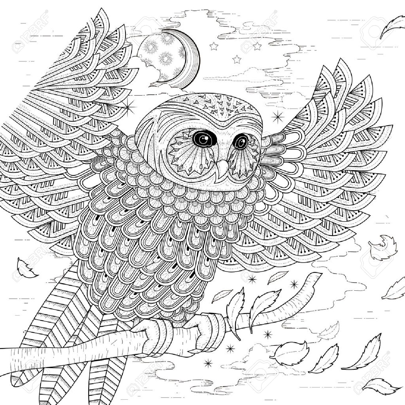 Lovely Owl Coloring Page Design In Exquisite Style Stock Vector