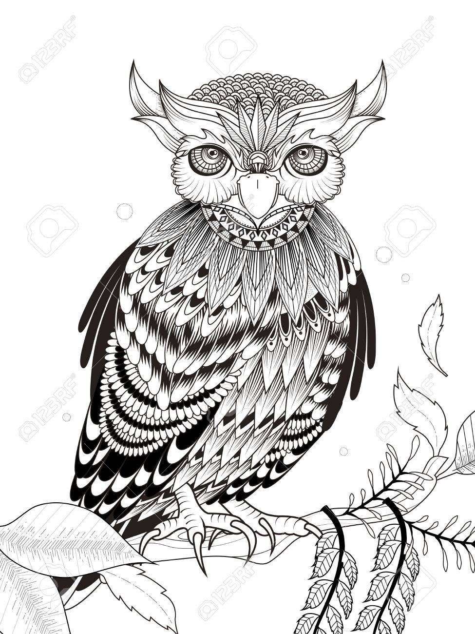 Elegant Owl Coloring Page In Exquisite Line Royalty Free Cliparts ...