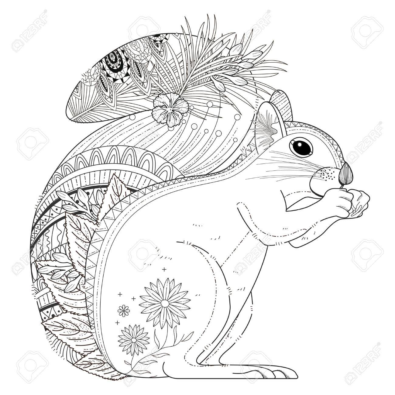 Squirrel Coloring Page Adorable Squirrel Coloring Page In Exquisite Line Royalty Free
