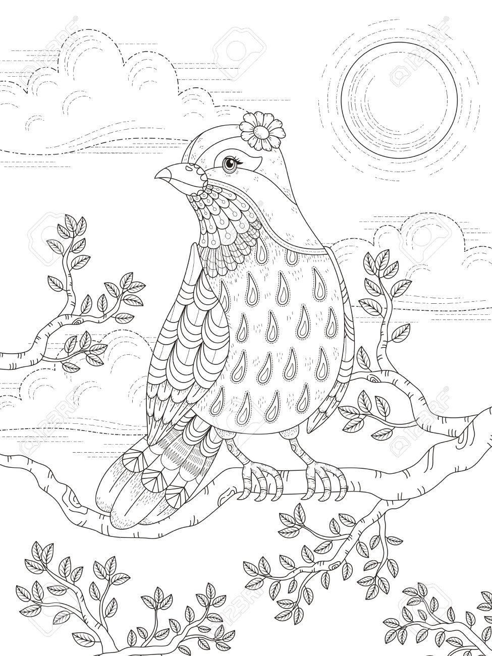 Erwachsener Malvorlagen Mit Schönen Dame Vogel Im Baum Lizenzfrei