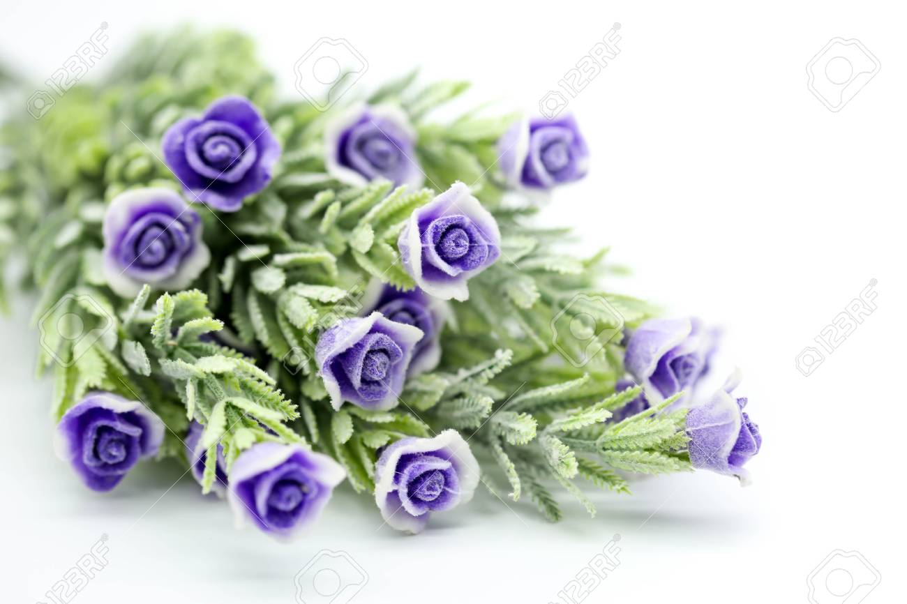 Purple Rose ,Artificial violet Flower Isolated on White background. - 97518162