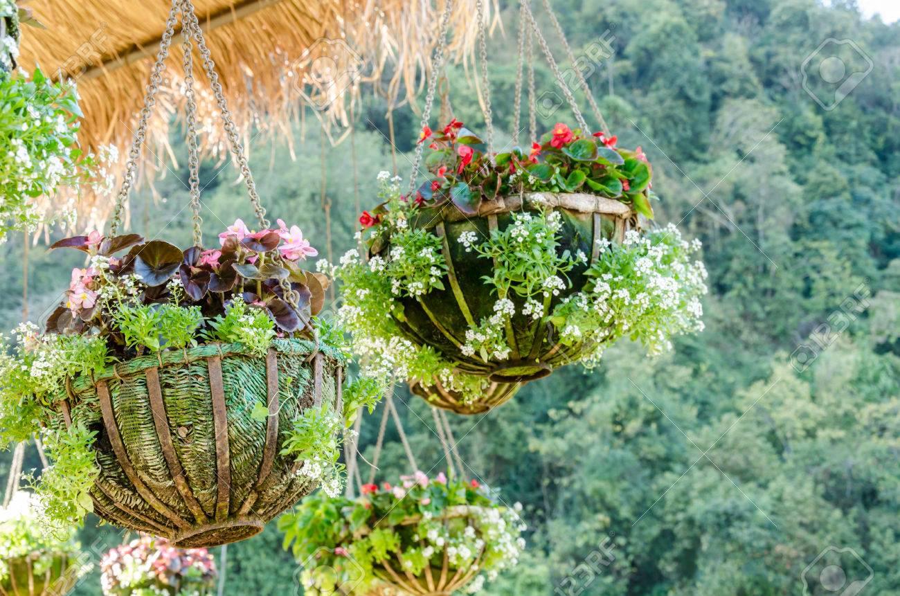 disegni giardino con appeso vaso di fiori in alta stagione o ... - Giardino Fiorito Disegno