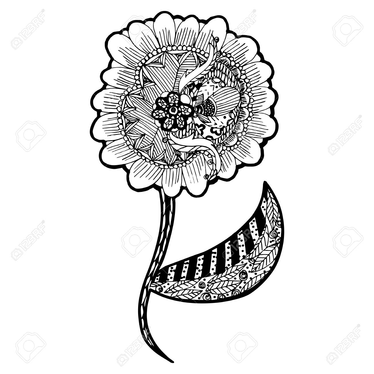 Flores Zentangle Disenos De Bosquejo En El Fondo Blanco