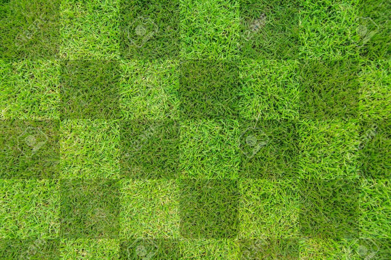 green grass soccer field background stock photo 32009314 green s89 green