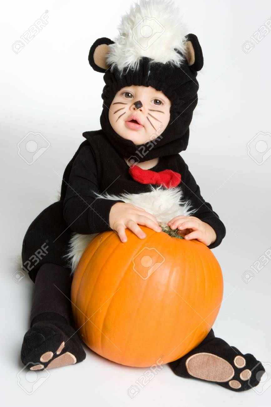 Cute Skunk Stock Photo - 3717561