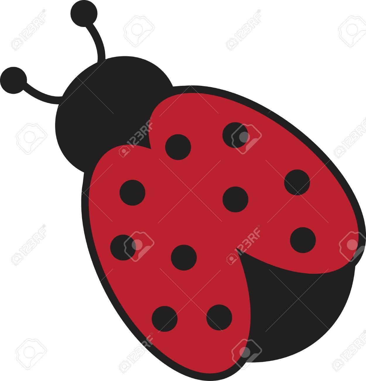 Ladybug - 9190334