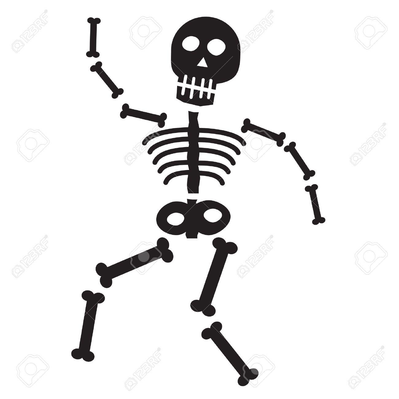Skelet Voor Halloween.Halloween Skeleton